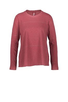 Shirt Pisa