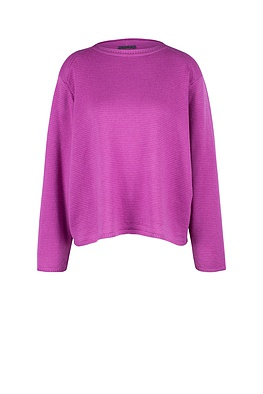 Pullover Arbelia 824